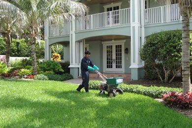 LAWN FERTILIZATION & INSECT CONTROL PROGRAM