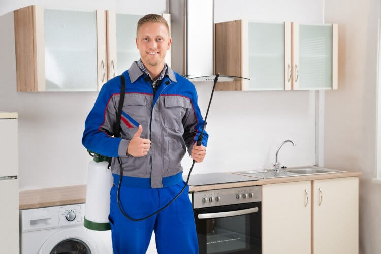 What's Included in Pest Control Service?
